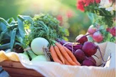 Picture for category Fresh Vegetables, Herbs, & Fruits